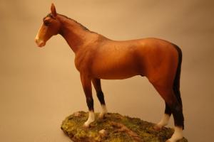 horse_a05.jpg